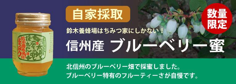 国産ブルーベリー蜜