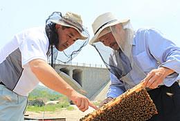 現地の養蜂家を指導する鈴木社長