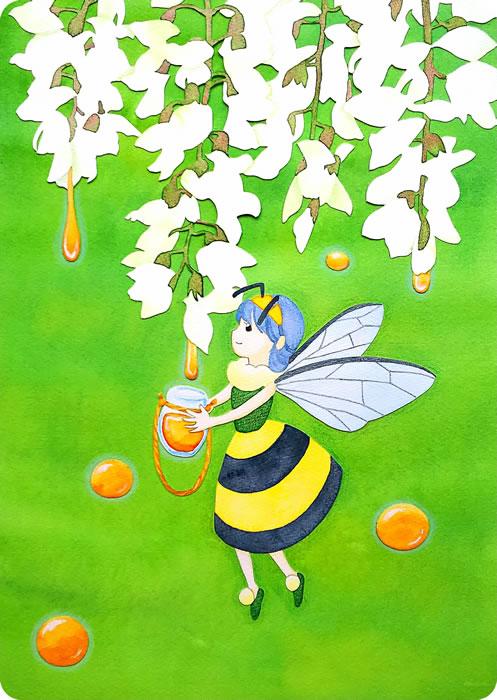 アカシアの蜜を採りに