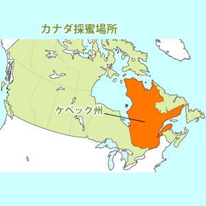 カナダ採蜜場所