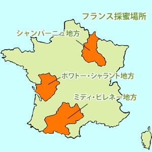フランス採蜜場所