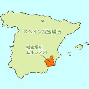 スペイン採蜜場所