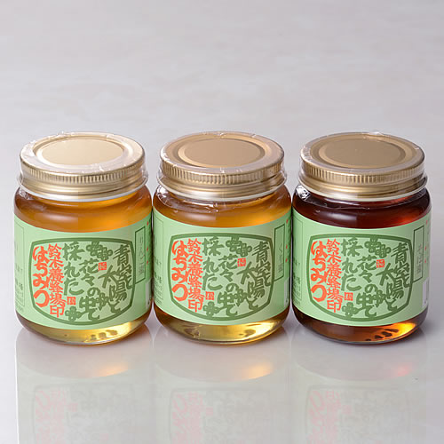 信州のはちみつ(リンゴ蜜、栗蜜、そば蜜)3本セット(160g×3本)