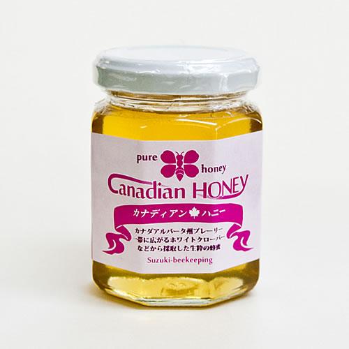 カナダ・ホワイトクローバー蜜